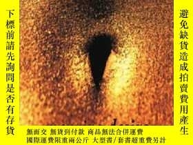 二手書博民逛書店Mapping罕見DesireY255562 David Bell Routledge 出版1995
