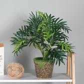 仿真植物 小盆栽仿真植物裝飾綠蘿葉龜背葉個性多肉假綠植家居室內桌面擺件-快速出貨
