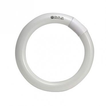 東亞三波長環型燈管燈泡色1P
