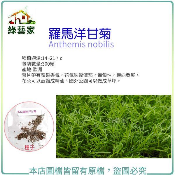 【綠藝家】K32.羅馬洋甘菊種子300顆