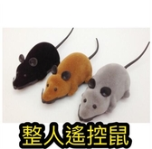 旋轉老鼠 鼠 遙控 寵物玩具老鼠 無線遙控逗貓老鼠 貓咪旋轉電動仿真老鼠