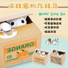 【存錢神器]韓國創意 可愛電動偷錢寵物存錢筒 儲蓄罐 硬幣筒 卡通 吃錢貓咪 熊貓存錢罐
