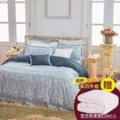 鴻宇 SUPIMA500織 四件式雙人兩用被床包組【買再送床包式保潔墊1入】奧麗芙 台灣製2120