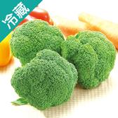 【台灣】西螺青花菜/顆【愛買冷藏】