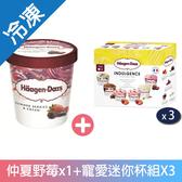 哈根達斯-仲夏野莓甜蜜寵愛迷你杯超值組【愛買冷凍】