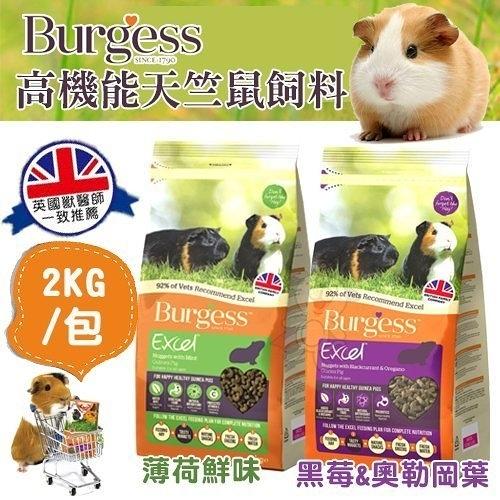 『寵喵樂旗艦店』伯爵Burgess高機能天竺鼠飼料《薄荷鮮味|黑莓&奧勒岡葉)》2kg/包