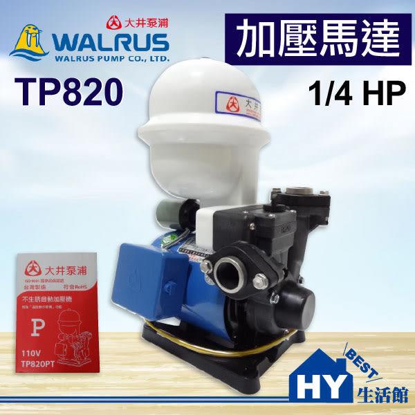 大井泵浦 TP820 加壓馬達。1/4HP 不生銹 塑鋼抽水機 加壓泵浦 自動加壓機。附無水斷電