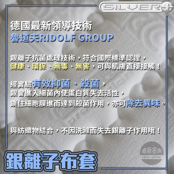 【嘉新名床】銀離子 ◆ 浮力床《加硬款 / 12公分 / 單人加大3.5尺》
