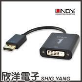 LINDY林帝 主動式 DisplayPort 轉 DVI 轉接器(41734) / 支援 4K / 多螢幕 / 支援 HDCP