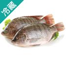 【台灣嚴選】吳郭魚2尾(500~600g/尾)【愛買冷藏】