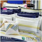 『幸福方程式』(5*6.2尺)床罩組/藍*╮☆【御芙專櫃】七件套100%高觸感天絲棉/雙人