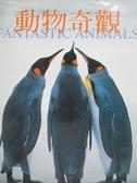 【書寶二手書T9/動植物_QIH】動物奇觀_提姆.基爾福等作; 謝維玲譯