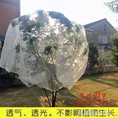 大棚防護網楊梅網罩櫻桃防蟲防風防鳥網水果樹罩 【快速出貨】