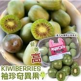 【果之蔬】紐西蘭Kiwi berries寶貝奇異果X1盒【每盒125g±10%】