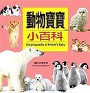 《人類》-兒童百科15 動物寶寶小百科【60 可愛的動物寶寶 小百科 教具 小禮物 贈品 文具 批發