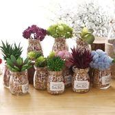 創意小盆栽仿真盆景迷你多肉植物擺設假花店鋪室內綠植裝飾品擺件WL4093【衣好月圓】TW