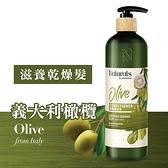 Naturals 橄欖護髮素490ml