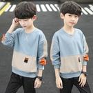 快速出貨 男童T恤男童裝長袖T恤中大童連帽T恤男孩上衣打底衫兒童體恤潮
