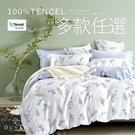 100%天絲-雙人床包枕套三件組- 多款...
