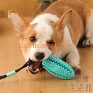 狗狗玩具耐咬磨牙寵物小型犬吸盤漏食球【極簡生活】