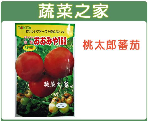 【綠藝家】大包裝G22.桃太郎蕃茄種子80顆