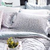 6x7特大雙人床包枕套兩件組 【不含被套】【 DR1015 Peggie 】 300織天絲™萊賽爾   台灣製 OLIVIA