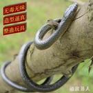 嚇人玩具蛇玩具仿真蛇仿真蛇假軟蛇整蠱恐怖愚人節禮物 XW4134【極致男人】
