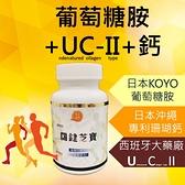 特價499元 關鍵芝寶 專利UC2 葡萄糖胺 鈣 UC-II 二型膠原蛋白 維骨力 骨本 運動保健【神農嚴選】