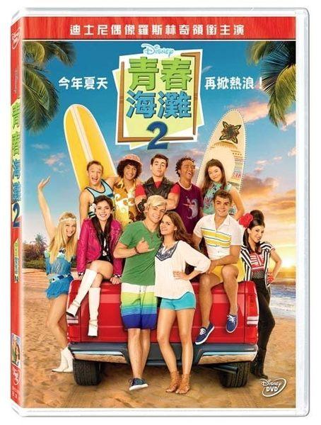 青春海灘2   DVD (購潮8)