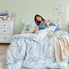 床包 / 雙人加大【蔓藤星語】含兩件枕套 100%天絲 戀家小舖台灣製AAU301