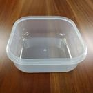 POLAR ICE  極地冰球 2.0-塑膠盒