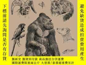 二手書博民逛書店Animal罕見DrawingY255562 Charles Knight Dover Publication