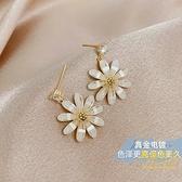 小雛菊耳釘耳飾花朵款氣質耳墜女純銀銀針【輕奢時代】