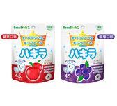 小饅頭** 雪印 口中清涼糖錠45粒(藍莓/蘋果)