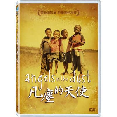 凡塵的天使 DVD