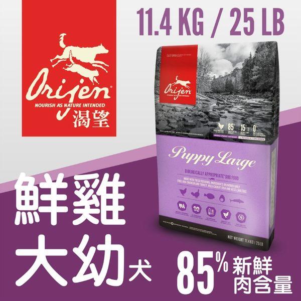 *WANG*Orijen渴望犬糧《大幼犬》11.4kg