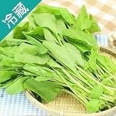 台灣菠菜1包(250±5%G/包)【愛買冷藏】