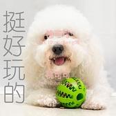 狗狗玩具球幼犬中大型犬磨牙棒刷牙潔齒寵物玩具【桃可可服飾】