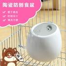 快速出貨寵物貂防刨食盆陶瓷易清潔防扒防刨防翻可固定土撥鼠松鼠食盆