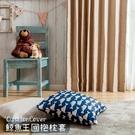 【抱枕套】 鯨魚王國 枕頭套 45X45cm 兒童房 客廳 沙發 台灣製 可水洗 ※無枕心