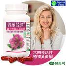 【赫而司】普羅曼絲鎂力升級紅花苜蓿植物膠囊(60顆/罐)