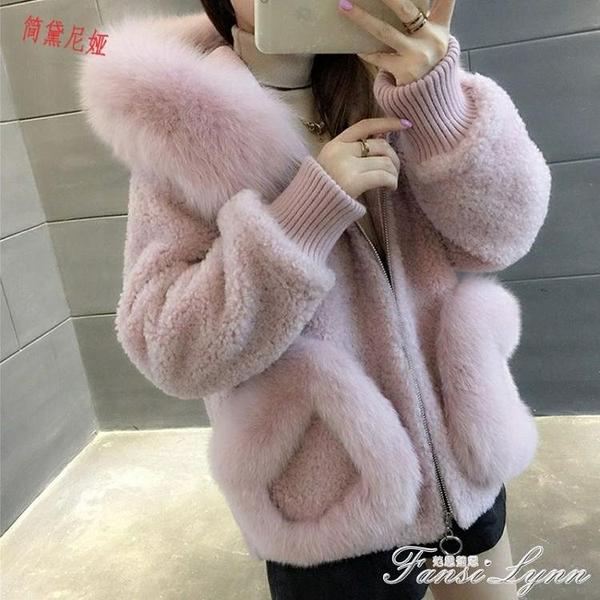 新款仿狐貍毛領顆粒絨外套女秋冬韓版連帽短款羊毛大衣 范思蓮恩