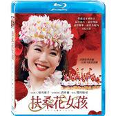 Blu-ray 扶桑花女孩BD