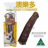 PetLand寵物樂園《澳洲澳樂多》100%天然風乾袋鼠尾骨 單根 / 狗零食