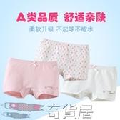 兒童內褲女3女童四角褲小孩平角褲5歲夏季女孩短褲寶寶純棉小學生