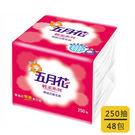 [奇奇文具] 【五月花 衛生紙】五月花 單抽式衛生紙 (170g) 250抽X48包/箱