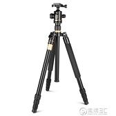 輕裝時代Q222單眼相機三腳架便攜微單攝影攝像手機支架三角架云台WD 聖誕節免運