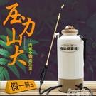 噴霧器 小型電動噴霧器 農用高壓新式充電噴水壺 自動澆花噴壺消毒打藥桶 YYJ 新年特惠