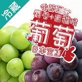 日本嚴選葡萄超值組(綠+黑)【愛買冷藏】