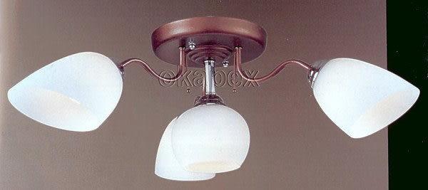 【燈王的店】半吸頂燈 3燈+小夜燈+電子開關 IC(客廳 餐廳 廚房 臥室燈 可參考) ☆ TY638B